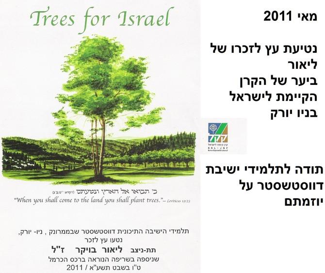 ניו יורק 11.6.11 נטיעת עץ לזכרו של ליאור   New York – Tree planting in memory of Lior