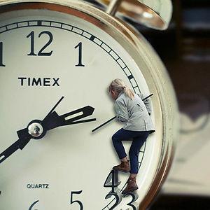 תבונת הזמן.jpg