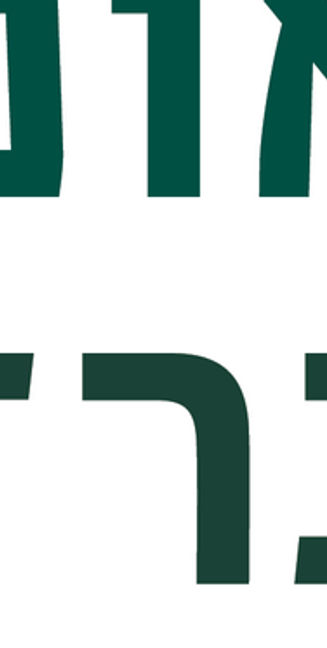BIU new symbol_4_20_main logo.jpg