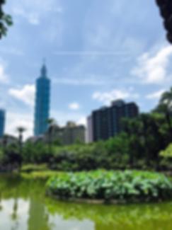 טיול להונג קונג, טייפה בעיברית