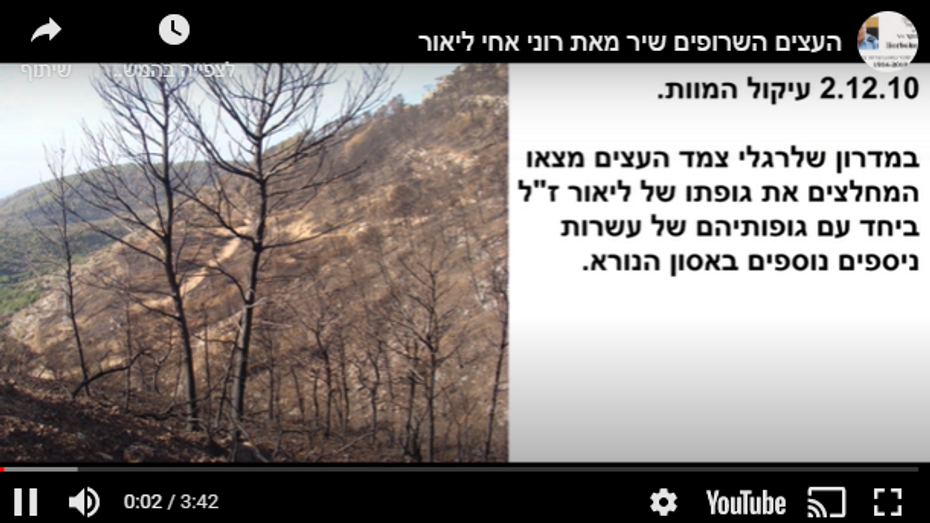 """The Burnt Trees"" sung by Roni Boiker, my brother Lior"