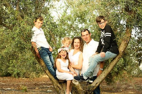 משפחת שגיב