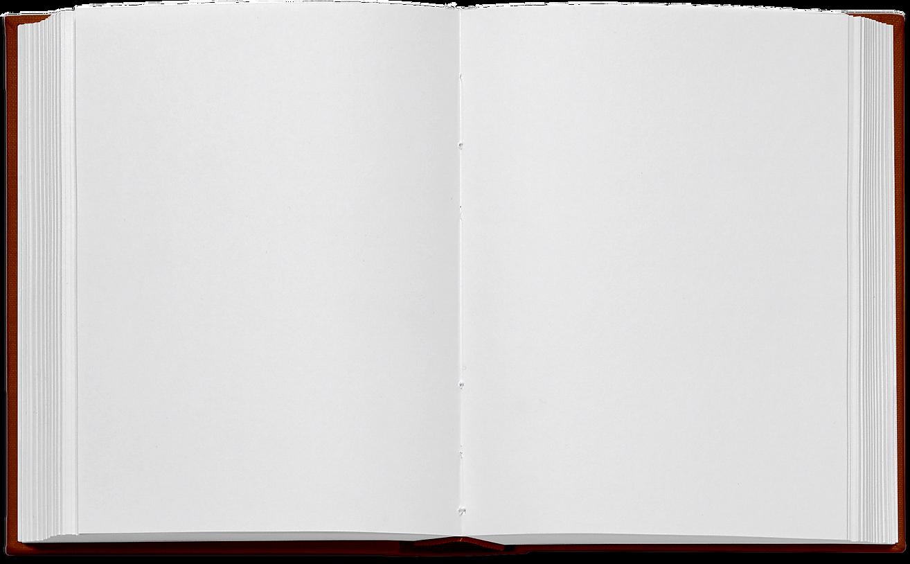 book bg.png