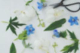 Flower workshop, han party, flower workshop Northwich, flower workshop Cheshire, flower workshop Liverpool, flower workshop Manchester, Flower workshop Chester, flower workshop Warrington, flower workshop Knutsford, flower workshop Crewe, flower workshop Nantwich