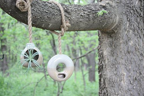 Air Plant Hanging Holder Doughnut/Ring Shape