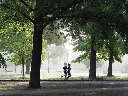 9 Reasons To Exercise Outdoors