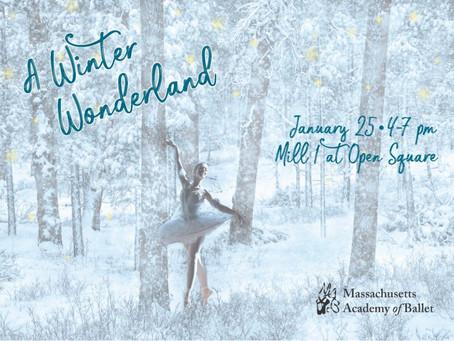 A Winter Wonderland Fundraiser ft. dancers Sabi Varga & Emily Entingh