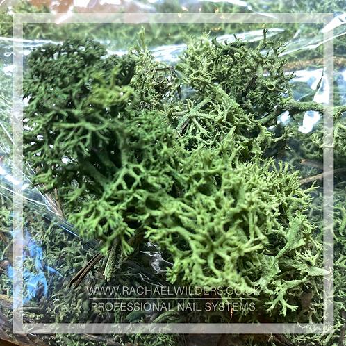 Nail art greenery artificial grass/trees