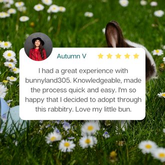 Bunnyland305 Review by Autumn V