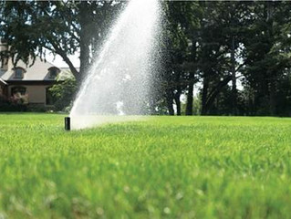 What does an irrigation system checkup include and why should I consider one?