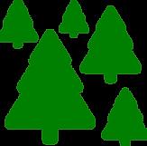 бор (зеленый).png