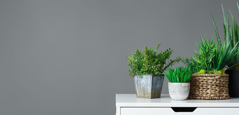 office-gardening-concept-CUQXW8M.jpg