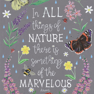 In all things of nature £2.50 + P&P