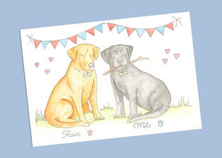 Two pets £30.00