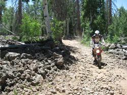 sam down trail.jpg