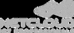 netcloud logo_edited