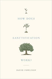How Does Sanctification Work David Powli