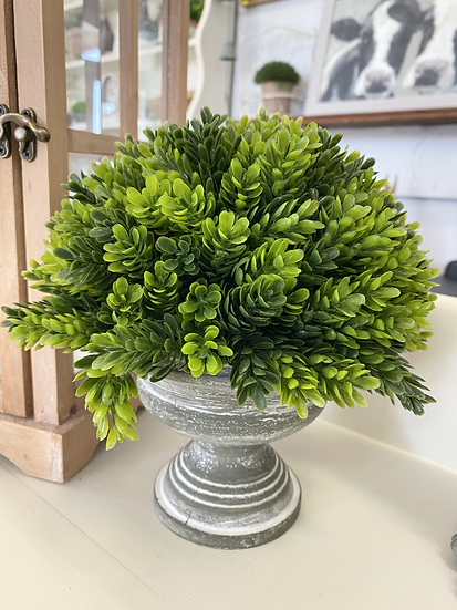 Formal Artificial Topiary (Grey)