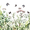 Thumbnail: Marvellous Gardens Transfer