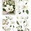 Thumbnail: 'Magnolia Garden' Belles and Whistles Transfer