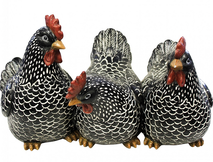 Chickens Sitting