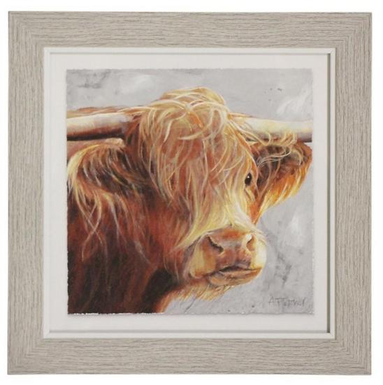 Brown Steer Framed Print