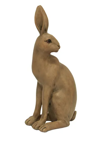 HAROLD THE HARE TURNING BROWN