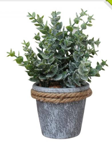 Faux Gum Leaf Plant in Pot