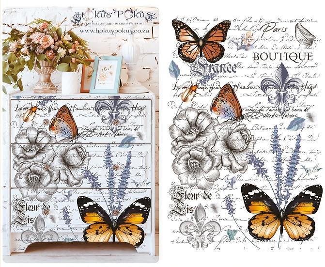 Papillon Transfer