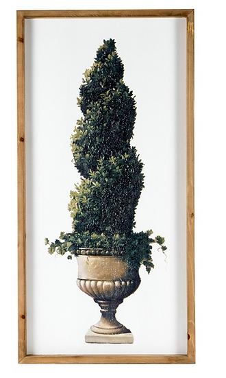 Spiral Topiary Artwork