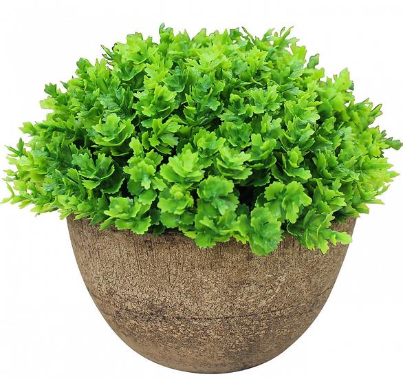 Artificial Moss Plant