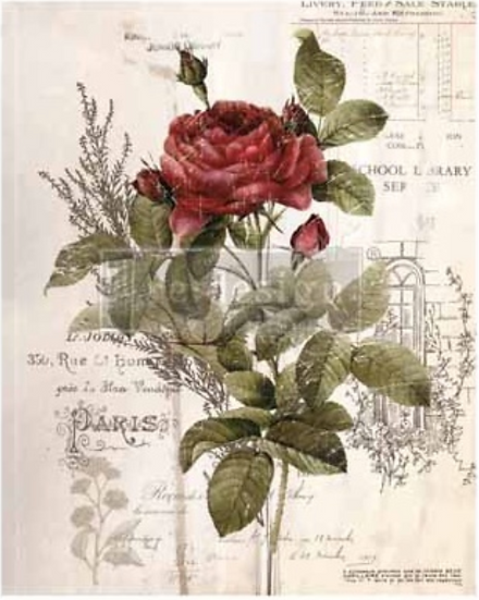 Redesign Decor Transfers-Botanical Rose