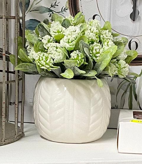 White Flowers in Pot