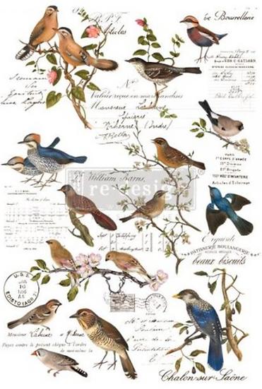 Re-Design Decor Transfer -Postal Birds