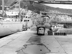 CIUDAD_DE_PAMPLONA_6400458_©Historia_de_La_Palma_(Facebook)_1970.jpg