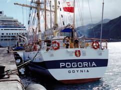 POGORIA_7911210_©Noray_(2).jpg