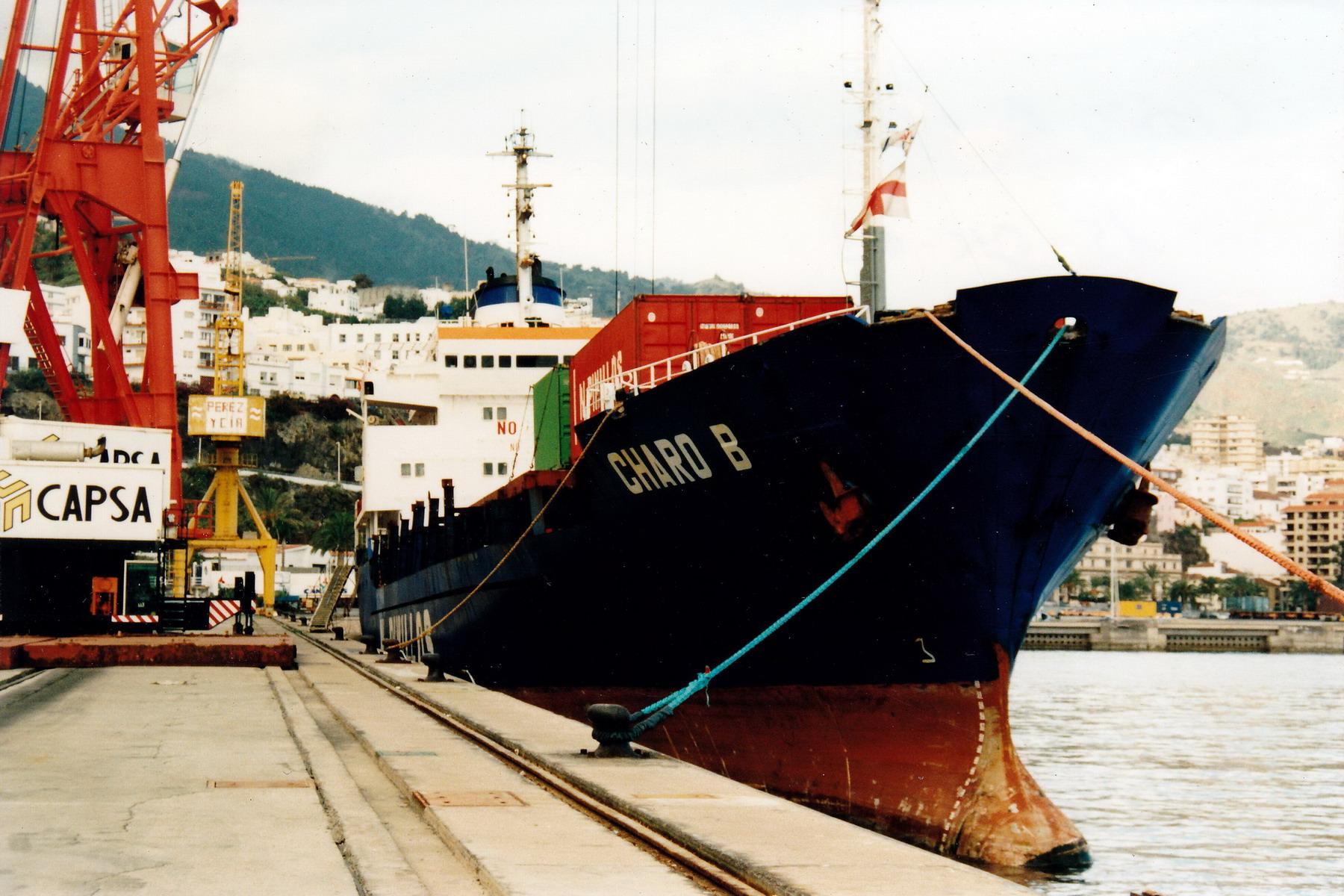 CHARO_B_7711660_©Jorge_L._Henríquez_Hernández._15_diciembre_2003_(1)