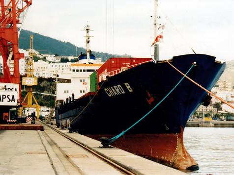CHARO_B_7711660_©Jorge_L._Henríquez_Hernández._15_diciembre_2003_(1).jpg