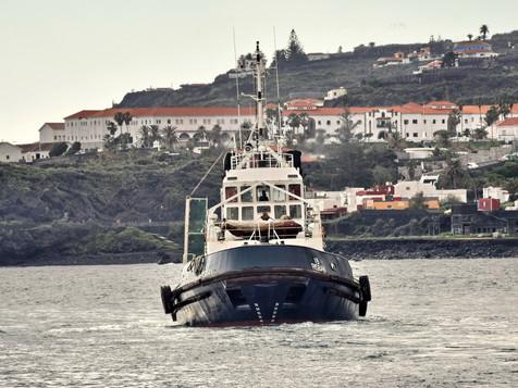 41VB RISBAN 8718768 ©Jorge L. Henríquez