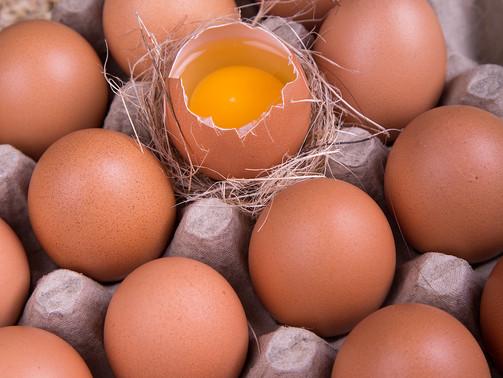 Bagaimanakah Cara Memilih Telur Yang Baik Untuk Kita Konsumsi?