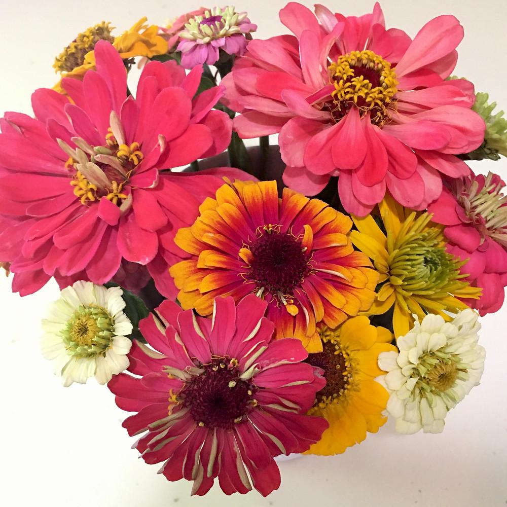 bouquet with zinnias