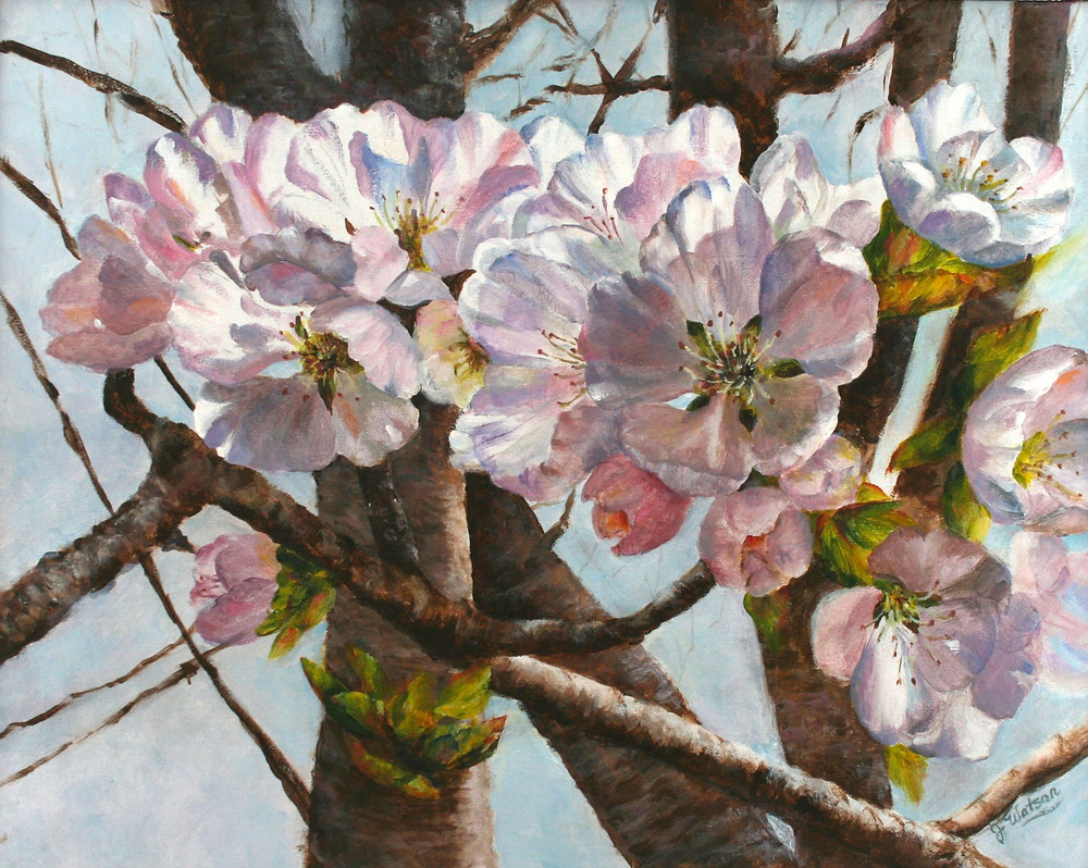 paintinng of cherry blossoms
