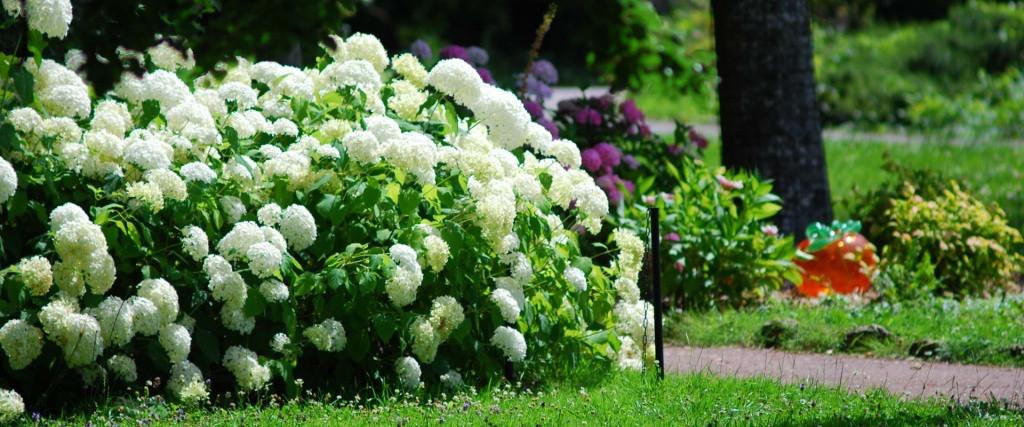 Parc fleuri