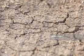 Cracks in Ground.jpg