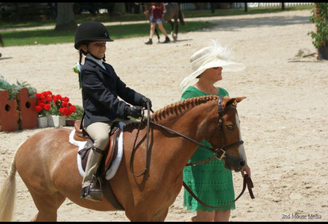 2016 Upperville Horse Show