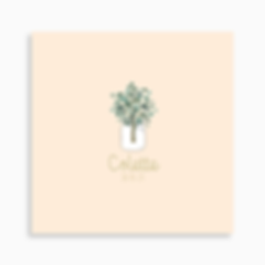 faire-part de naissance bouquet d'eucalyptus pour fille de couleur rose