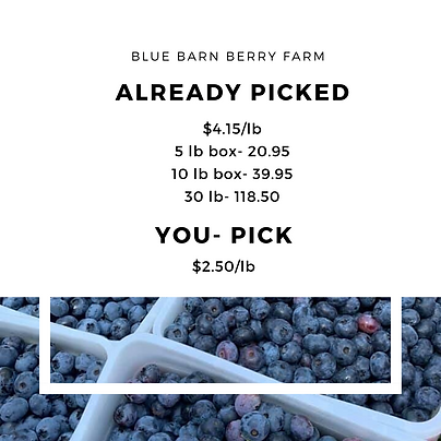 2020 blueberry prices.png