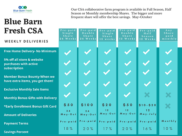 Teal Simple Comparison Chart (2).png