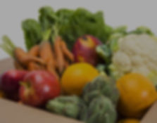 veggie box.jpg