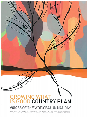 Country Plan Cover.png